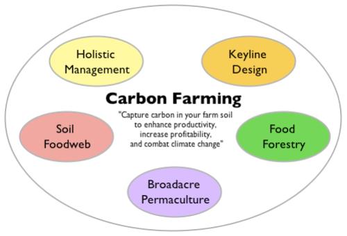 Carbon_Farming